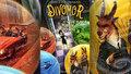 Recenze: Divomor aneb když i dospělé očaruje dětská kniha