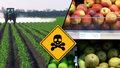 """Brusel zakázal """"jedovaté"""" pesticidy: Potraviny kvůli tomu zdraží, varují zemědělci"""