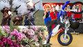 Tipy na víkend: Extrémní krása orchidejí, výročí krvavé bitvy i přehlídka motorek
