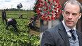 Nezaměstnaní na pole, navrhuje ministr. Británie se pomalu chystá na volnější režim