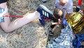 Při vycházce na Božím daru si hůlkou probodla nohu! Ženu do nemocnice transportoval vrtulník