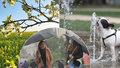 Meteorologické léto je tady. Víme, kdy přijdou tropy a kdy čekat déšť