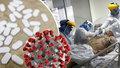 Rychlá a levná obrana proti koronaviru? Vědci prozradili, jaký vitamín zabírá