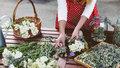 Nasbírejte si bylinky! Víme, které léčí bolavé nohy nebo klouby a pomáhají proti pocení