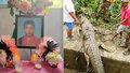 Krokodýl popadl chlapce a stáhl ho pod vodu: Když ho rozřezali, našli šokující důkaz