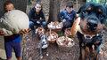 Rostou, vzkazují houbaři! Podívejte se na jejich fantastické úlovky!