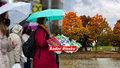 Česko čeká ochlazení a v listopadu i sníh. Sledujte radar Blesku, jak to bude se srážkami