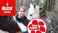 Blesk Podcast: Kůň na jatka, valach z Pardubické nebo stařenka z Chuchle. Petra Říhová zachraňuje koně a kočky