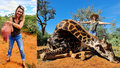 """Lovkyně (32) se pochlubila skolením vzácné žirafy: Na šokující """"valentýnce"""" pózuje s jejím srdcem v rukou!"""