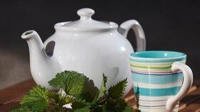 Kopřivový čaj: Dodá sílu a pomůže od alergie