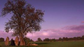 Magická síla stromů! Jak je správně objímat, aby léčily?
