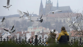 V noci minus, přes den kolem nuly: Zima v Praze dál zůstává, bude padat i déšť se sněhem