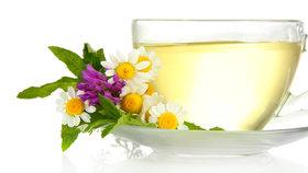 5 bylin pro jarní očistu těla