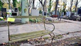 Olšanské hřbitovy plné shnilých laviček: Neonové papírky vyzývají majitele k odstranění