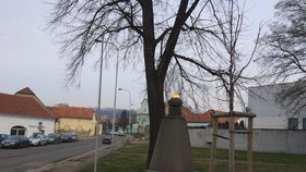 Ku sta letům státu vysadí v Hloubětíně lípu. Další oslavy se ponesou v duchu výstav