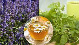 Voňavá pomoc z přírody! 4 bylinkové čaje + léčivá tinktura