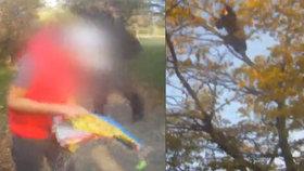 Klukovi na stromě uvázl drak: Poslal pro něho brněnské strážníky