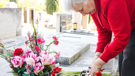Péče o hrob: Jaké máte povinnosti a co zajistí hřbitov?
