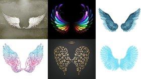 Test osobnosti: Která křídla si vyberete? Prozradí, jaké vlastnosti máte od andělů