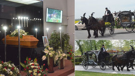 Jezdkyni Jitku (†23) zavalil kůň: Na poslední rozloučení přivezl rakev kočár s koňmi