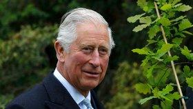 Nakažený princ Charles naštval zdravotníky: Test na koronavirus si prý nezasloužil