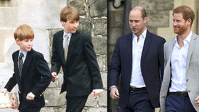 Zklamání v královské rodině: Tohle William od Harryho v den narozenin rozhodně nečekal!