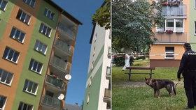 Nepříčetný mladík (21) z Aše pobodal vlastní matku: Policie  ho obvinila z vraždy