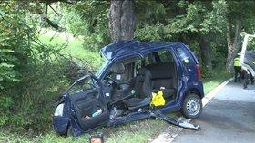 Řidička (53) zemřela po nárazu do stromu: V zatáčce vyjela ze silnice