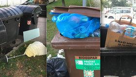 "Pražané »po nás potopa«: Papírové tašky plné PETek ve směsu a podobné ""úlovky"""