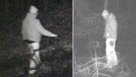 Fantom z Německa roky uniká policii: Řidičům do cesty hází klády, pak po autech hází kameny!