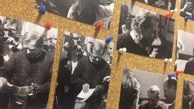 """""""Estébácká"""" sledka i podpisy Charty 77: Archiv vystavuje lejstra související s Havlovou perzekucí"""