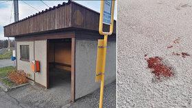 Mladík (17) zastřelil v Těrlicku kamaráda: Vražda na zastávce kvůli drogám?