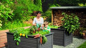 Vyvýšený záhon zkrášlí vaši zahradu. Dařit se v něm bude květinám i zelenině