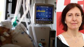 Šéfka plicařů varuje kvůli koronaviru: Plicní ventilace u pacientů nemusí fungovat. Proč?