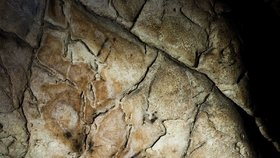 Senzace z Moravského krasu: Nejstarší jeskynní kresba v Česku je stará 7000 let!