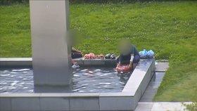 To bude ňamka! Cachtali si nohy ve fontáně v Brně a umývali v ní i kila syrového masa!