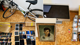 Nakradené předměty za miliony čekají na své majitele. Policie se ptá, nejste jedním z nich?