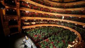 Korona foto dne: Barcelonskou operu místo lidí obsadily květináče. Umělci zahráli 2292 kytkám