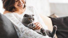 Jaké zvíře se k vám hodí? K Rakům kočka, k upovídaným Blížencům papoušek!