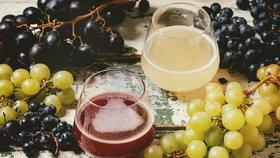 Burčák a mladé víno. Víte, jak vybrat opravdu kvalitní?