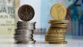 Přijmout nebo nepřijmout euro? České firmy se neshodnou. Co chcete vy?