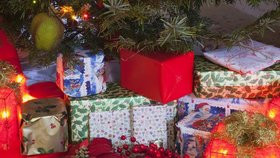 Tipy na vánoční dárky pro kutily a zahrádkáře. Inspirujte se!