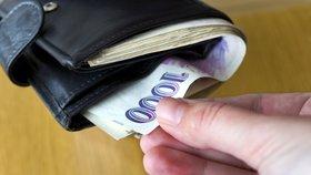 Cizinci našli ztracenou tašku plnou peněz: 55 000 Kč si chtěli nechat