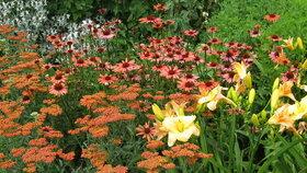 Aby nám zahrada kvetla celý rok: Květiny pro všechna roční období
