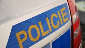 Šílený únosce: Přítelkyni vozil v kufru auta, pak ji přivázal ke stromu
