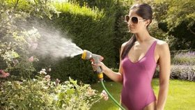 Jak zalévat v parnech zahradu a nemít na záhonech dušenou zeleninu?