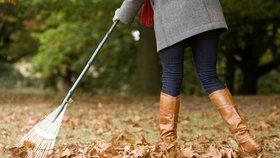 Zahrada v říjnu: Přípravy na zimu vrcholí