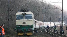 Vlak na Olomoucku narazil do stáda krav: Srážku nepřežilo 17 zvířat!