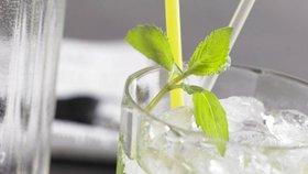 Pivo, cider, vinný střik: Jaké letní drinky pít a nepřibrat?