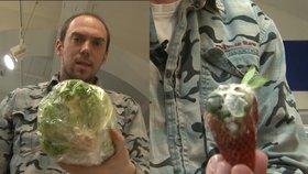 Shnilé okurky, klíčící brambory, plesnivé jahody v akci. Tak dopadla inspekce Blesku a reportéra Hrušky